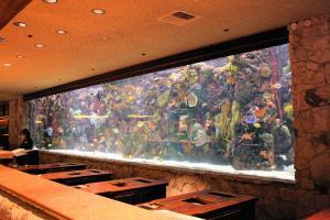 Aquarium casino